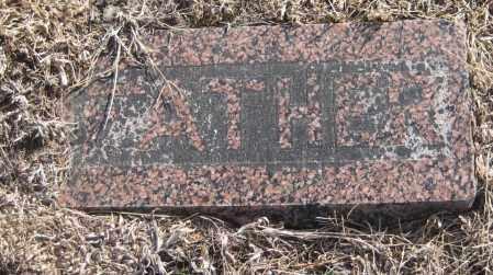 HENRY, DAVID - Saline County, Nebraska | DAVID HENRY - Nebraska Gravestone Photos
