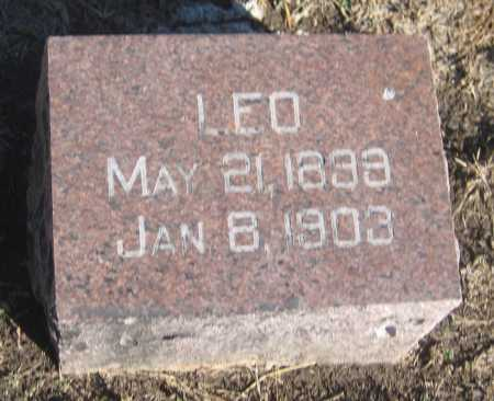 HUNT, LEO - Saline County, Nebraska | LEO HUNT - Nebraska Gravestone Photos