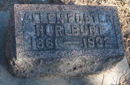 HURLBURT, ALLEN FOSTER - Saline County, Nebraska | ALLEN FOSTER HURLBURT - Nebraska Gravestone Photos