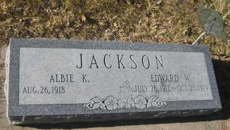JACKSON, EDWARD W. - Saline County, Nebraska | EDWARD W. JACKSON - Nebraska Gravestone Photos