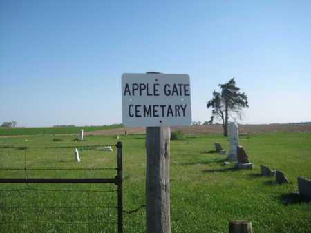 JACKSON, R. T. - Saline County, Nebraska | R. T. JACKSON - Nebraska Gravestone Photos