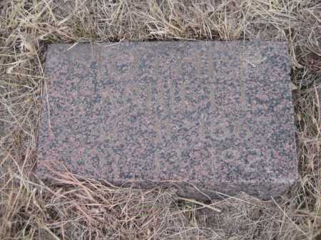 JACOX, HARRIET - Saline County, Nebraska | HARRIET JACOX - Nebraska Gravestone Photos