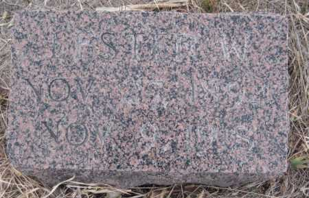JACOX, LESTER W. - Saline County, Nebraska   LESTER W. JACOX - Nebraska Gravestone Photos