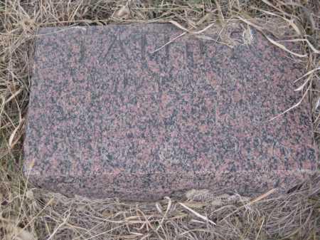 JACOX, WILLIAM - Saline County, Nebraska   WILLIAM JACOX - Nebraska Gravestone Photos