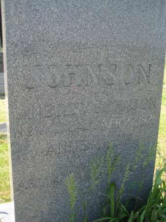JOHNSON, ANDREW - Saline County, Nebraska | ANDREW JOHNSON - Nebraska Gravestone Photos