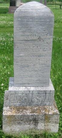 JOHNSON, ANTONIE - Saline County, Nebraska | ANTONIE JOHNSON - Nebraska Gravestone Photos