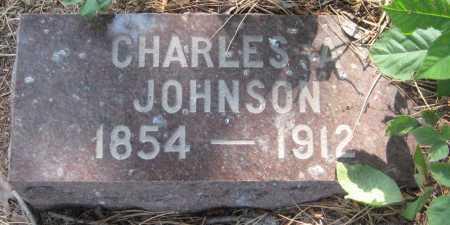 JOHNSON, CHARLES A. - Saline County, Nebraska | CHARLES A. JOHNSON - Nebraska Gravestone Photos