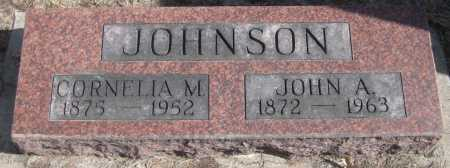 JOHNSON, JOHN A. - Saline County, Nebraska | JOHN A. JOHNSON - Nebraska Gravestone Photos