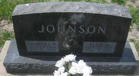 JOHNSON, CHARLES H. - Saline County, Nebraska   CHARLES H. JOHNSON - Nebraska Gravestone Photos