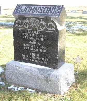 JOHNSON, JANE A. - Saline County, Nebraska | JANE A. JOHNSON - Nebraska Gravestone Photos