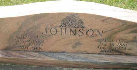 JOHNSON, WALTER - Saline County, Nebraska | WALTER JOHNSON - Nebraska Gravestone Photos