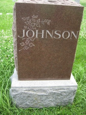 JOHNSON, FAMILY MONUMENT (FRANK) - Saline County, Nebraska | FAMILY MONUMENT (FRANK) JOHNSON - Nebraska Gravestone Photos