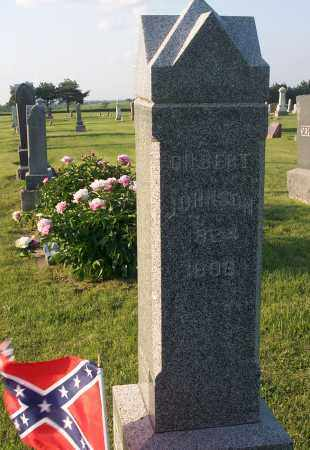 JOHNSON, GILBERT WATERMAN - Saline County, Nebraska | GILBERT WATERMAN JOHNSON - Nebraska Gravestone Photos