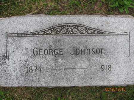 JOHNSON, GEORGE - Saline County, Nebraska | GEORGE JOHNSON - Nebraska Gravestone Photos