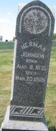 JOHNSON, HERMAN - Saline County, Nebraska | HERMAN JOHNSON - Nebraska Gravestone Photos