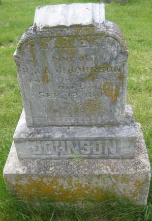 JOHNSON, HARLEY - Saline County, Nebraska | HARLEY JOHNSON - Nebraska Gravestone Photos