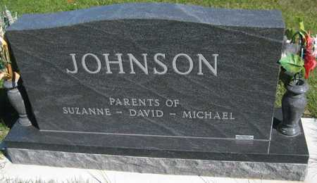 JOHNSON, HAROLD - Saline County, Nebraska | HAROLD JOHNSON - Nebraska Gravestone Photos
