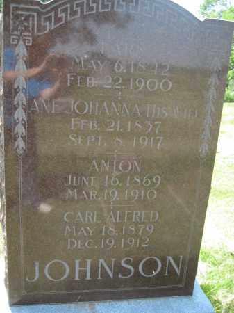 JOHNSON, CARL ALFRED - Saline County, Nebraska | CARL ALFRED JOHNSON - Nebraska Gravestone Photos