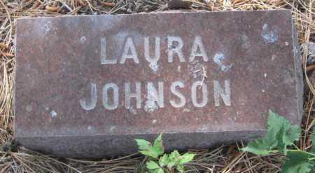 JOHNSON, LAURA - Saline County, Nebraska | LAURA JOHNSON - Nebraska Gravestone Photos