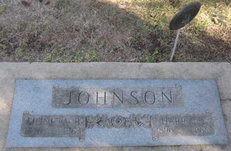JOHNSON, MONETA B. - Saline County, Nebraska   MONETA B. JOHNSON - Nebraska Gravestone Photos