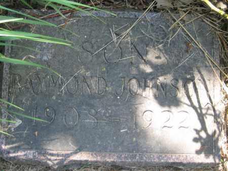 JOHNSON, RAYMOND - Saline County, Nebraska | RAYMOND JOHNSON - Nebraska Gravestone Photos