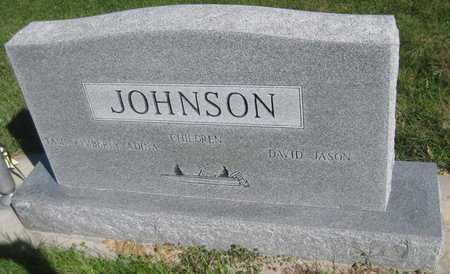 JOHNSON, DIANA - Saline County, Nebraska | DIANA JOHNSON - Nebraska Gravestone Photos