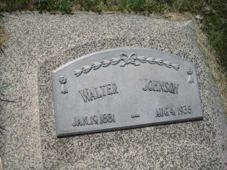 JOHNSON, WALTER - Saline County, Nebraska   WALTER JOHNSON - Nebraska Gravestone Photos