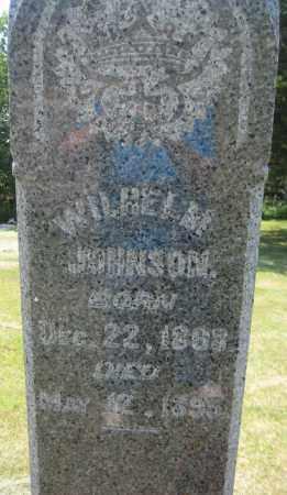 JOHNSON, WILHELM - Saline County, Nebraska | WILHELM JOHNSON - Nebraska Gravestone Photos