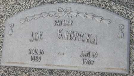 KRUPICKA, JOSEPH - Saline County, Nebraska | JOSEPH KRUPICKA - Nebraska Gravestone Photos