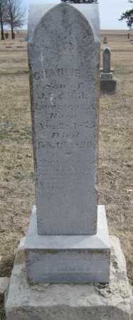 LIPPINGOTT, CHARLIE F. - Saline County, Nebraska   CHARLIE F. LIPPINGOTT - Nebraska Gravestone Photos