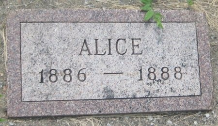 MCCRACKEN, ALICE - Saline County, Nebraska   ALICE MCCRACKEN - Nebraska Gravestone Photos