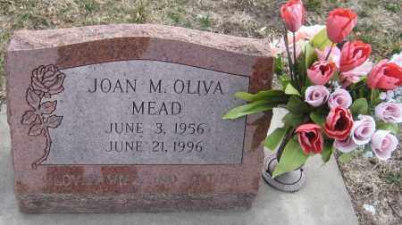 OLIVA MEAD, JOAN M. - Saline County, Nebraska | JOAN M. OLIVA MEAD - Nebraska Gravestone Photos