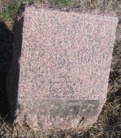 MINICH, BERNARD A. - Saline County, Nebraska | BERNARD A. MINICH - Nebraska Gravestone Photos