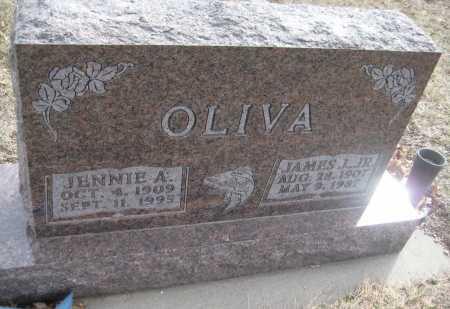 OLIVA, JENNIE A. - Saline County, Nebraska | JENNIE A. OLIVA - Nebraska Gravestone Photos