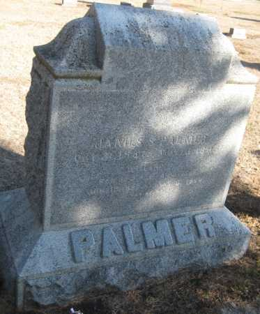 PALMER, WILLIAM - Saline County, Nebraska | WILLIAM PALMER - Nebraska Gravestone Photos