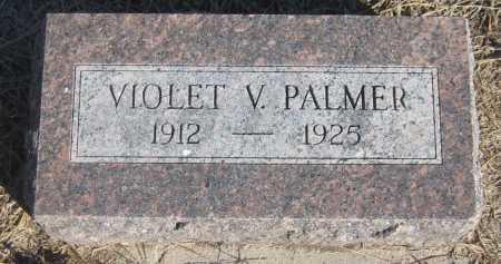 PALMER, VIOLET V. - Saline County, Nebraska | VIOLET V. PALMER - Nebraska Gravestone Photos