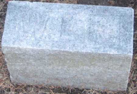 PALMER, WILLIAM L. - Saline County, Nebraska | WILLIAM L. PALMER - Nebraska Gravestone Photos