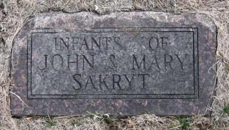 SAKRYT, INFANTS - Saline County, Nebraska | INFANTS SAKRYT - Nebraska Gravestone Photos