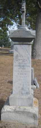 SKELTON, JEMIMA - Saline County, Nebraska   JEMIMA SKELTON - Nebraska Gravestone Photos