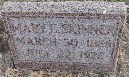 SKINNER, MARY E. - Saline County, Nebraska | MARY E. SKINNER - Nebraska Gravestone Photos
