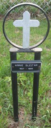 SLEZAK, ANNIE - Saline County, Nebraska | ANNIE SLEZAK - Nebraska Gravestone Photos