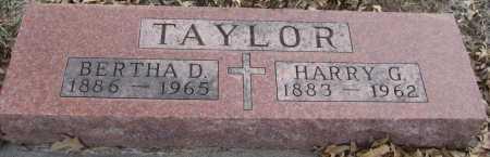 TAYLOR, HARRY G. - Saline County, Nebraska   HARRY G. TAYLOR - Nebraska Gravestone Photos