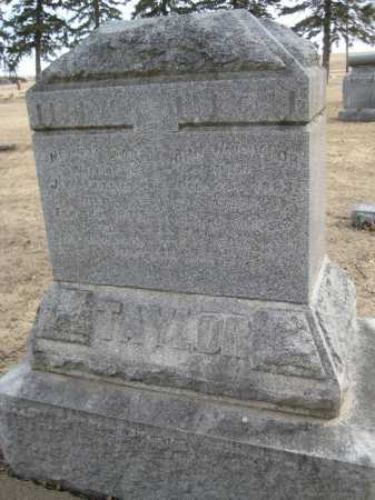 TAYLOR, JOHN W. - Saline County, Nebraska | JOHN W. TAYLOR - Nebraska Gravestone Photos