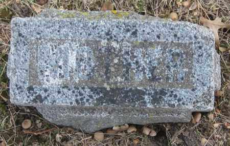 TAYLOR, HELEN - Saline County, Nebraska | HELEN TAYLOR - Nebraska Gravestone Photos