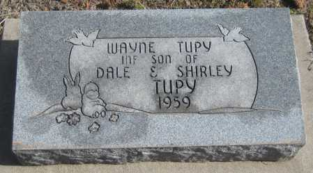 TUPY, WAYNE - Saline County, Nebraska | WAYNE TUPY - Nebraska Gravestone Photos