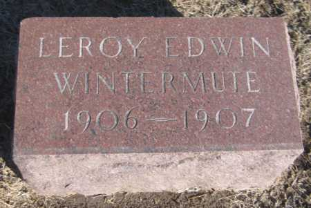 WINTERMUTE, LEROY EDWIN - Saline County, Nebraska   LEROY EDWIN WINTERMUTE - Nebraska Gravestone Photos