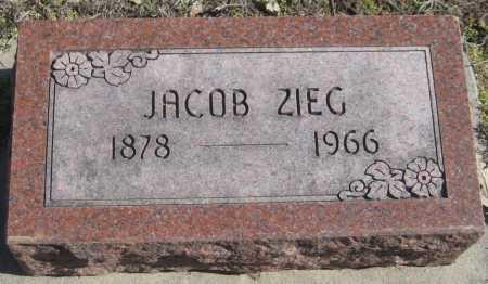 ZIEG, JACOB - Saline County, Nebraska | JACOB ZIEG - Nebraska Gravestone Photos