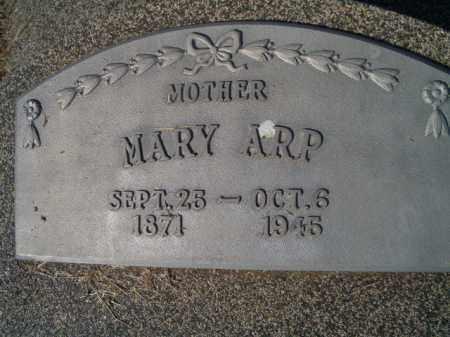 ARP, MARY - Saunders County, Nebraska | MARY ARP - Nebraska Gravestone Photos