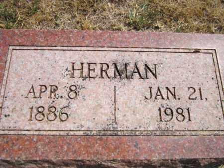 ERICKSON, HERMAN - Saunders County, Nebraska | HERMAN ERICKSON - Nebraska Gravestone Photos