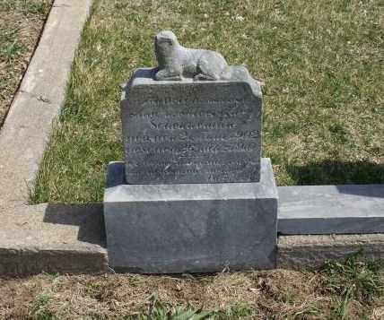 SCHEUNEMAN, HUBERT A. - Saunders County, Nebraska | HUBERT A. SCHEUNEMAN - Nebraska Gravestone Photos